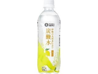 みなさまのお墨付き 伊都の天然水仕立て炭酸水 レモン ペット500ml