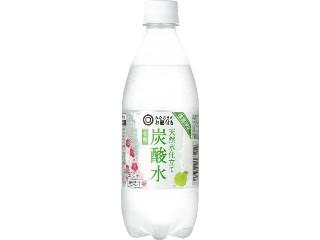 みなさまのお墨付き 天然水仕立て 炭酸水 うめ ペット500ml