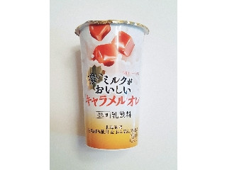 HOKUNYU 濃いミルクがおいしいキャラメルオレ