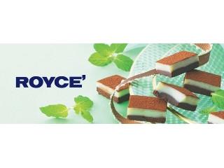 生チョコレート チョコミント
