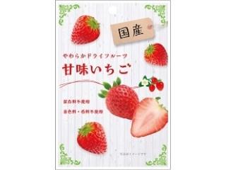 南信州菓子工房 国産 やわらかドライフルーツ甘味いちご 袋25g