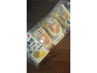 北海道チーズ蒸しケーキ ミニ